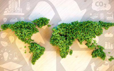 Nachhaltigkeitsgedanke in Unternehmen: Corporate Social Responsibility